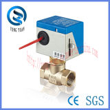 Brass 2-Way Electric Control Valve com CE (BS-818-20)