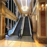 Scala mobile per il centro commerciale & il centro commerciale