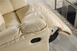 Мебель софы Италии отдыха кожаный (756)