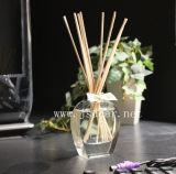 Hot Sale Reed Diffuser Set cadeau promotionnel (JSD-K0013)