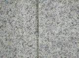 Fußboden-Fliesen des Granit-G603 von eigener Fabrik