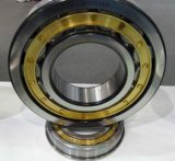 Zylinderförmige Nu10/500 Rollenlager