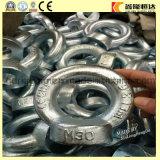 楕円形の目のナットを持ち上げるステンレス鋼DIN 582 M5
