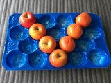Animal de estimação por atacado e vácuo material dos PP que dá forma à bandeja Pocket plástica do bloco para a fruta de quivi