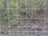 분야 Fence (공장 20 년 이상)