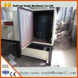 De Machine die van de Briket van de Biomassa van de Matrijs van de Ring van de hoge Capaciteit op het Zaagsel van de Wortel aandringen. enz.