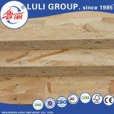 1985年以来のLuliのグループからの家具のための直接直面されたOSB