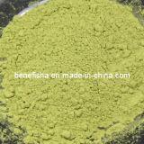 Matcha Puder sofortiges Matcha grüner Tee-Puder