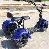 электрический самокат трицикла 3wheel с двойными местами
