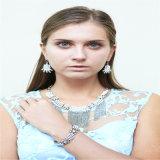 Boucle d'oreille réglée de bracelet de collier de modèle de résine de talons de bijou acrylique neuf de mode