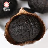 Único alho orgânico chinês 800g do preto do bulbo