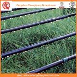 農業またはコマーシャルのためのポリエチレンフィルムの単一スパンの温室
