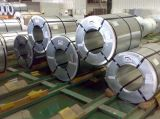 Il disegno preverniciato del mattone ha galvanizzato la bobina d'acciaio (PPGI)
