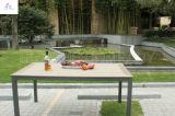 Mobilia esterna di legno del parco della mobilia della plastica di 100%