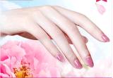 Маска перчатки руки Moirsturizing внимательности кожи