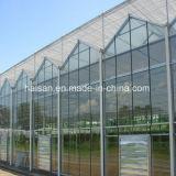 Парник Multi-Пяди Velo земледелия стеклянный для овощей