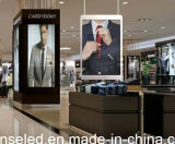 Afficheur LED P4 de location transparent polychrome d'intérieur de Shenzhen