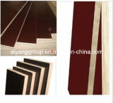 Película Faced Plywood con Best Price