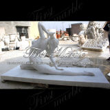 Marmeren Standbeeld Mej.-368 van Metrix Carrara van het Standbeeld van het Graniet van het Standbeeld van de Steen van het Standbeeld