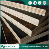 O fabricante da película concreta do núcleo Phenolic do Poplar enfrentou a madeira compensada para a construção