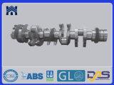 La fabbrica di pezzo fucinato del fornitore della Cina personalizza l'albero a gomito, l'acciaio di no. 45