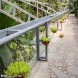 Serra facente un giro turistico ecologica della serra di vetro della Camera