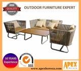 Do sofá secional ao ar livre ajustado da mobília do sofá do Rattan mobília ajustada do jardim
