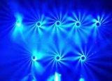 het LEIDENE 19*15W RGBW Oog die van de Bij het HoofdLicht van de Was van het Gezoem van de Straal bewegen