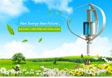 Piccola turbina di vento verticale verticale Tetto-Montata verticale di asse del generatore di vento della turbina di vento