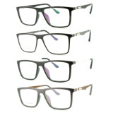 Bâti optique de monocle en plastique de lunetterie d'Ultem de qualité avec la tempe en aluminium E051