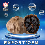 Neue Ankunft mit Qualitäts-Schwarz-Knoblauch für Verkauf 500g