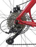 Liga do peso de Leight que compete a bicicleta