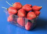 Bandeja de empaquetado de la fruta y verdura plástica disponible del animal doméstico de la ampolla de las cubiertas 250 gramos