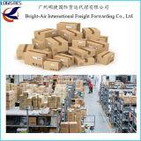 Courier d'UPS TNT Federal Express de DHL de service de la livraison rapide exprès de Chine dans le monde entier (la Jamaïque etc.)