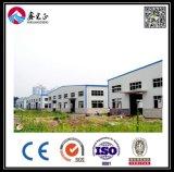 Entrepôt préfabriqué de structure métallique (BYSS2016021504)