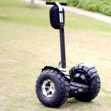 2017 scooters chauds des prix de vente, scooter d'équilibre de 2 roues, char électrique de la Chine
