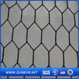 Ячеистая сеть сетки нержавеющей стали 0.3mm X30mm шестиугольная на сбывании