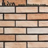 Pedra artificial da cor clara do material de construção, tijolo da parede (YLD-18030)