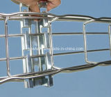 bandeja de cabo do engranzamento de fio de 50*100mm