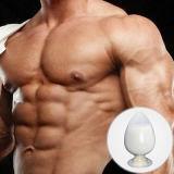 Deca-Durabolin/pó cristalino branco de Nandrolon Decanoate para a osteoporose