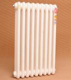 El calentador pulsa a agua caliente el radiador del aluminio de la calefacción central