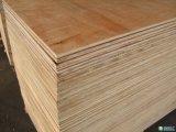 madera contrachapada del álamo de 1220X 2440X 12mm/15mm/18m m