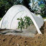 Tela do Nonwoven da agricultura dos PP Spunbond da tampa da estufa da proteção do inverno