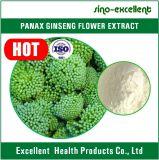 Extrato da flor do Ginseng de Panax