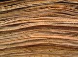 [توب قوليتي] فييتنام شجرة أوكالبتوس لب قشرة لأنّ خشب رقائقيّ