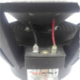 "Subwoofer de áudio de carro de alta potência de 10 ""(HSW-1001)"