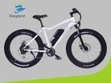 리튬 건전지를 가진 26 인치 전기 뚱뚱한 자전거