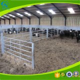 Panneau de bétail galvanisé par acier pour la clôture de bétail