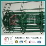 Giardino di recinzione galvanizzato della rete fissa del ferro euro/euro comitato di recinzione