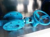 Клапан-бабочка высокой эффективности ексцентрическым загерметизированная металлом с коробкой передач работает